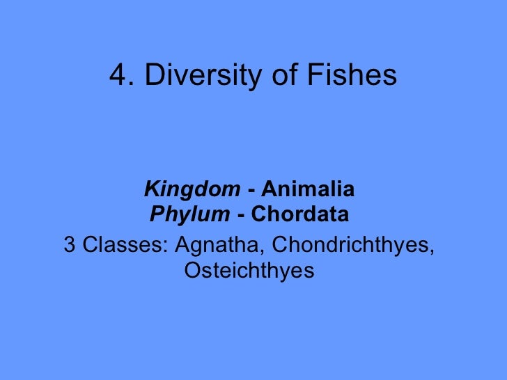 4. Diversity of Fishes Kingdom  - Animalia Phylum  - Chordata 3 Classes: Agnatha, Chondrichthyes, Osteichthyes