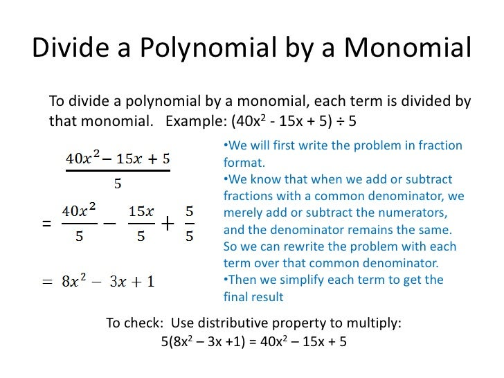 dividing a polynomial by a monomial worksheet