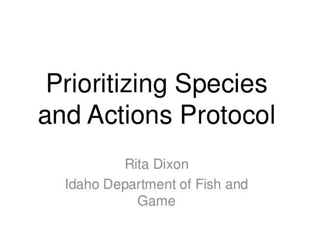 Dixon prioritization presentation 20130603