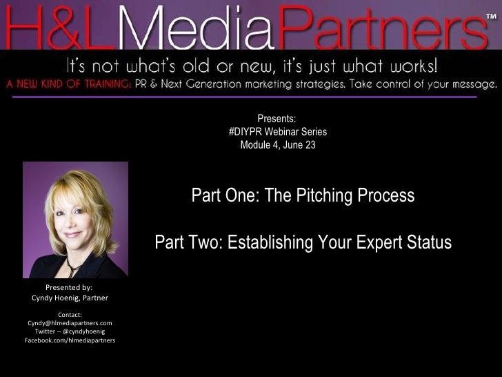 DIYPR Pitching Process & Establish Your Expert Status