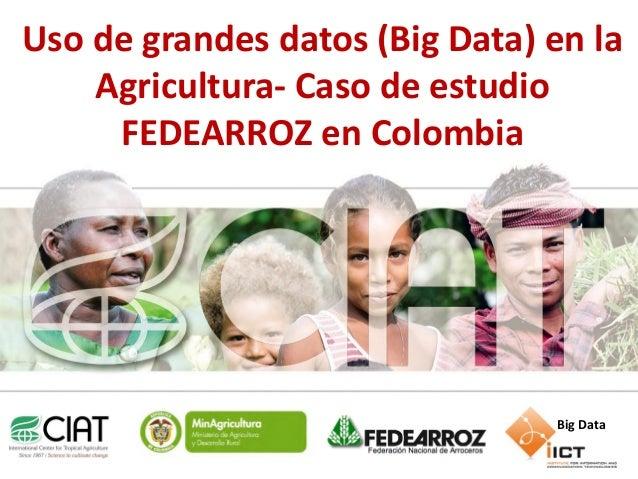 Uso degrandes datos (Big Data) en la Agricultura- Caso de estudio FEDEARROZ en Colombia