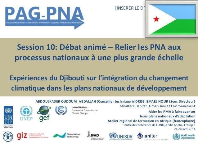 Session 10: Débat animé – Relier les PNA aux processus nationaux à une plus grande échelle Expériences du Djibouti sur l'i...