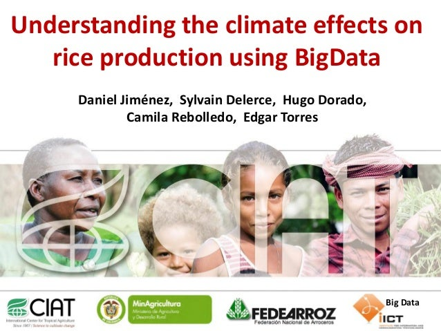 Understanding the climate effects on rice production using BigData Daniel Jiménez, Sylvain Delerce, Hugo Dorado, Camila Re...
