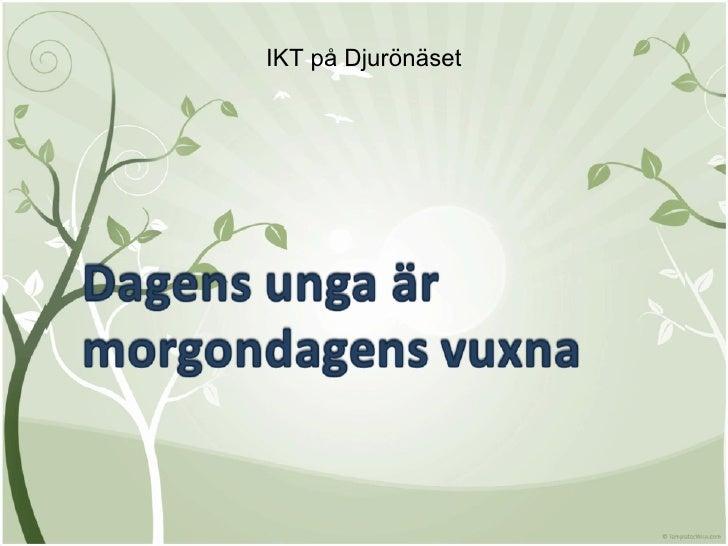 IKT på Djurönäset