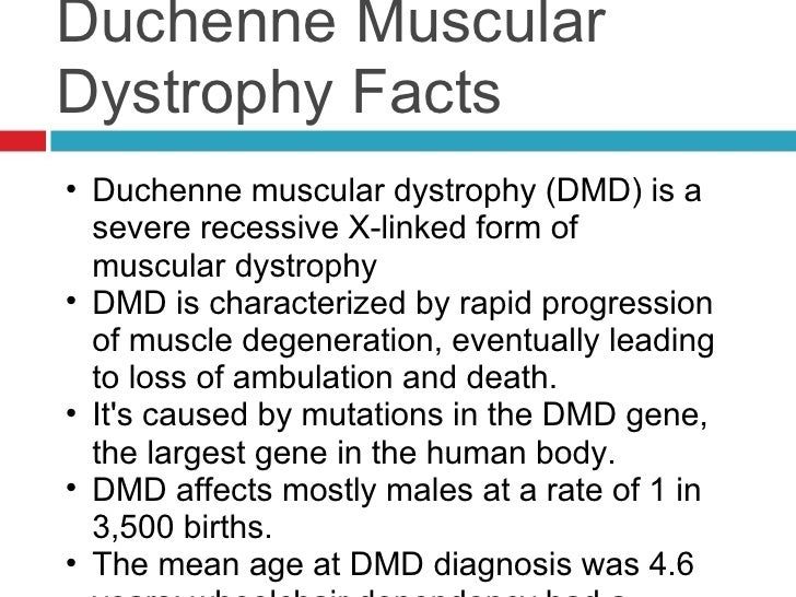 essay on duchenne muscular dystrophy