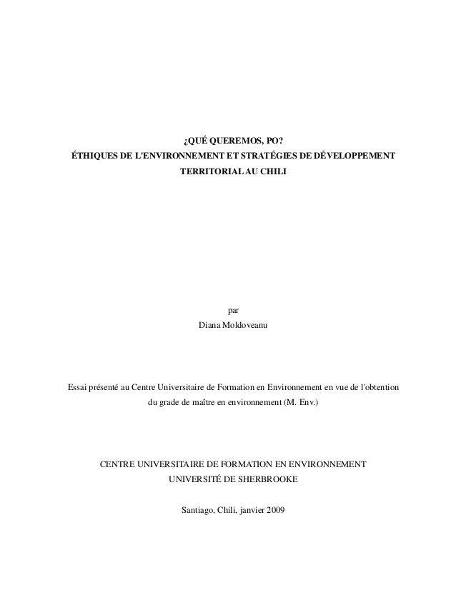 ¿QUÉ QUEREMOS, PO? ÉTHIQUES DE L'ENVIRONNEMENT ET STRATÉGIES DE DÉVELOPPEMENT TERRITORIALAU CHILI par Diana Moldoveanu Ess...