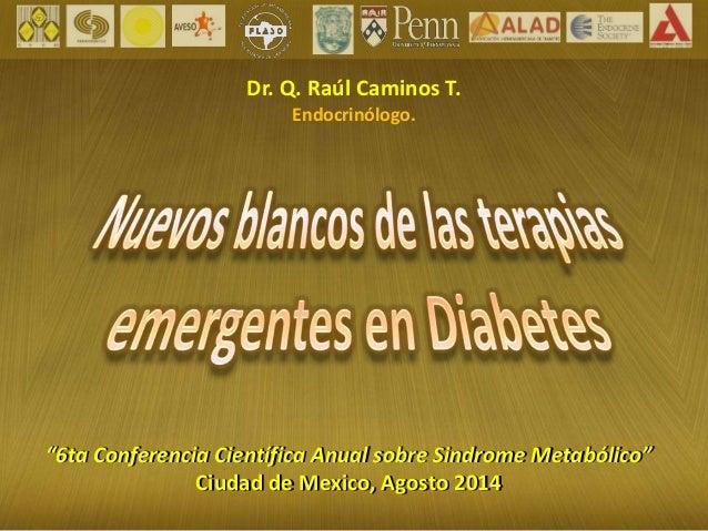 """Dr. Q. Raúl Caminos T.  Endocrinólogo.  """"6ta Conferencia Científica Anual sobre Sindrome Metabólico""""  Ciudad de Mexico, Ag..."""