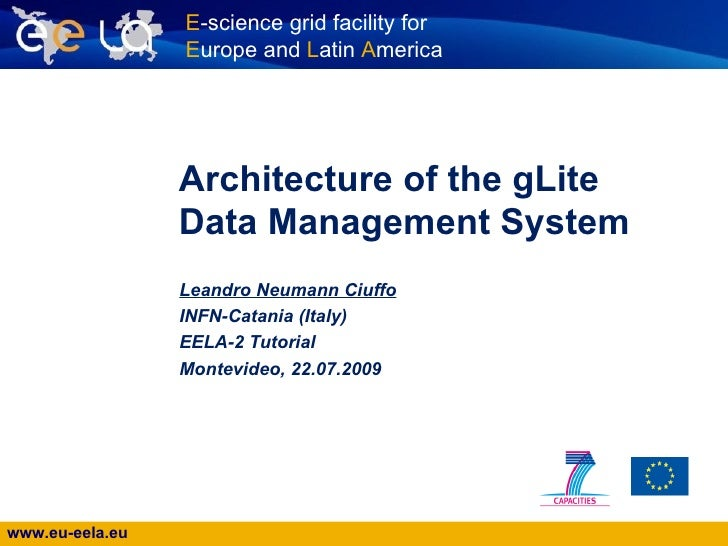 gLite Data Management System