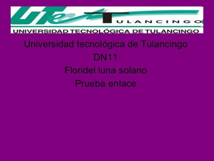 <ul><li>Universidad tecnológica de Tulancingo  </li></ul><ul><li>DN11  </li></ul><ul><li>Floridel luna solano  </li></ul><...