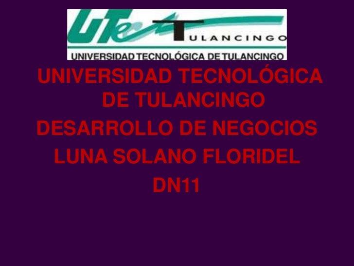 UNIVERSIDAD TECNOLÓGICA     DE TULANCINGODESARROLLO DE NEGOCIOS LUNA SOLANO FLORIDEL          DN11