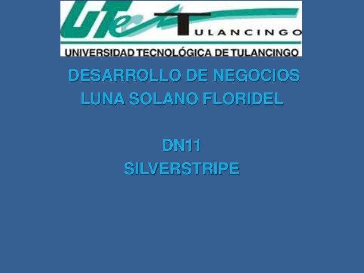DESARROLLO DE NEGOCIOS LUNA SOLANO FLORIDEL         DN11     SILVERSTRIPE