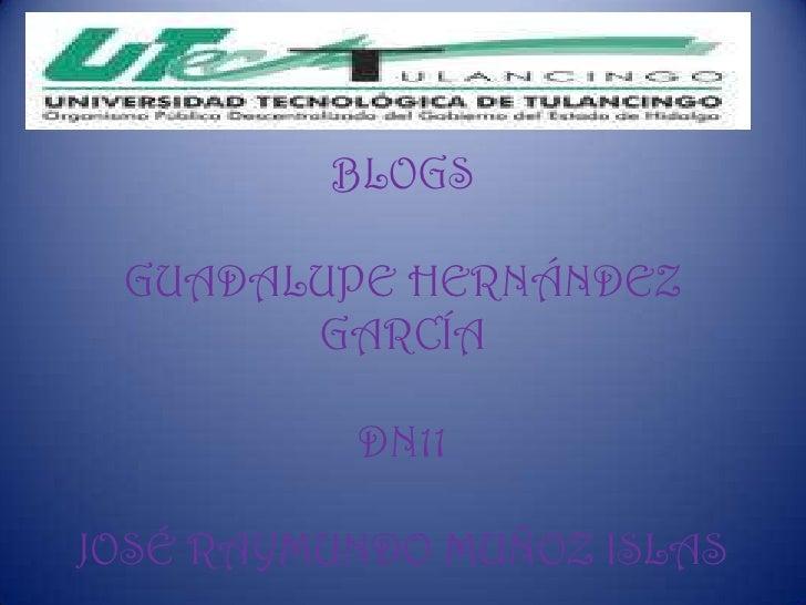 BLOGS GUADALUPE HERNÁNDEZ       GARCÍA          DN11JOSÉ RAYMUNDO MUÑOZ ISLAS