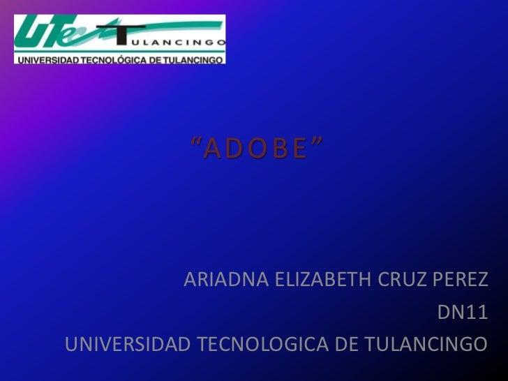"""A D O B E ""          ARIADNA ELIZABETH CRUZ PEREZ                                 DN11UNIVERSIDAD TECNOLOGICA DE TULANCINGO"