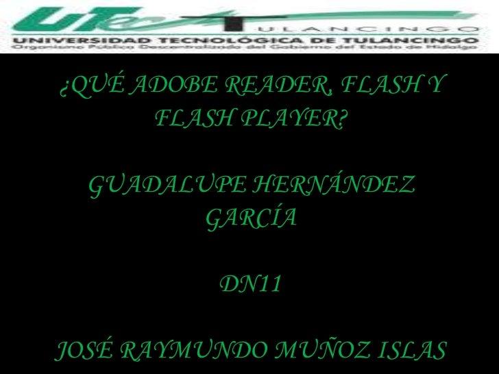 ¿QUÉ ADOBE READER, FLASH Y      FLASH PLAYER? GUADALUPE HERNÁNDEZ       GARCÍA          DN11JOSÉ RAYMUNDO MUÑOZ ISLAS