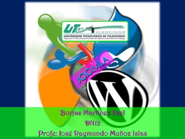 JOOMLA Borjas Martínez Itzel DN12 Profe: José Raymundo Muñoz Islas