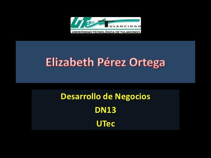 Desarrollo de Negocios        DN13         UTec
