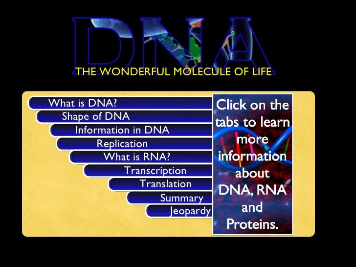 <ul><li>THE WONDERFUL MOLECULE OF LIFE </li></ul>Shape of DNA What is DNA? Information in DNA Replication Summary What is ...