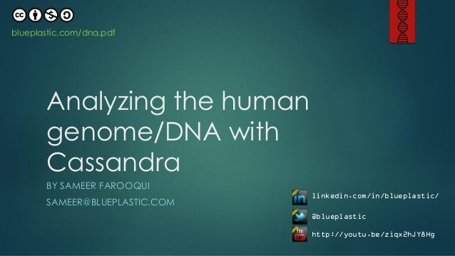 blueplastic.com/dna.pdf       Analyzing the human       genome/DNA with       Cassandra       BY SAMEER FAROOQUI          ...