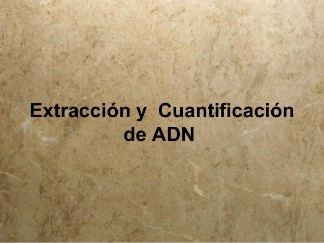 Extracción y Cuantificación de ADN