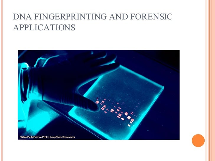 Galerry Forensic powerpoint