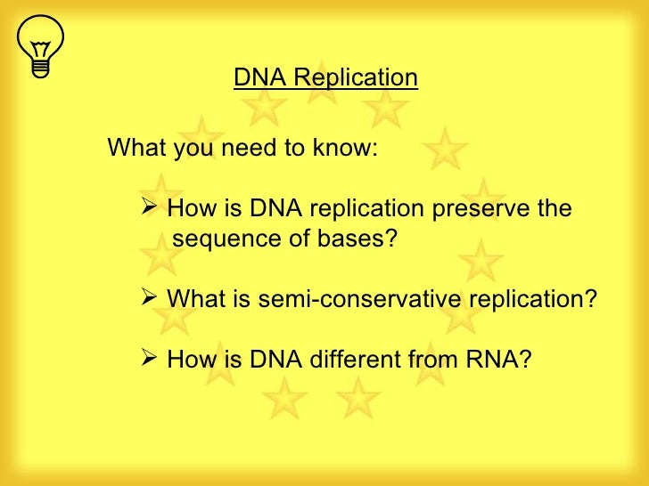 <ul><li>What you need to know: </li></ul><ul><ul><li>How is DNA replication preserve the  sequence of bases? </li></ul></u...