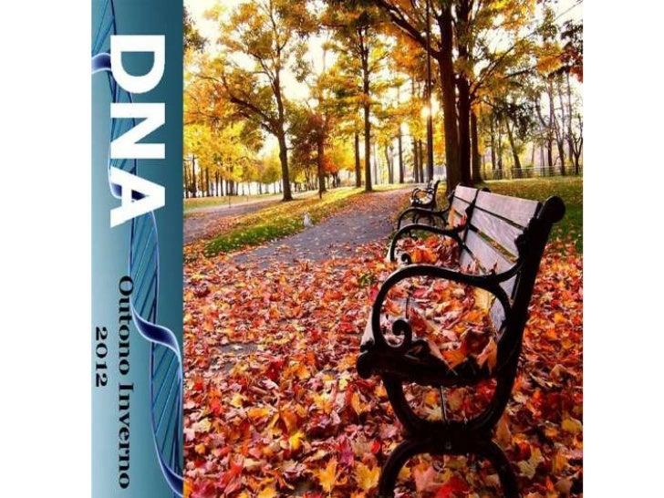 DNA - Coleção Outono Inverno 2012