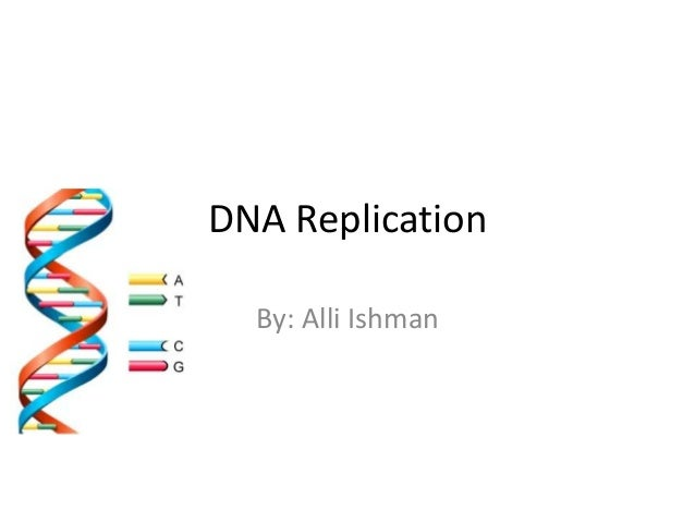 DNA Replication By: Alli Ishman