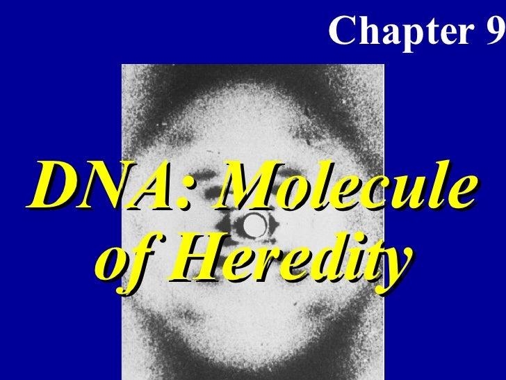 DNA-APBio Ch 9