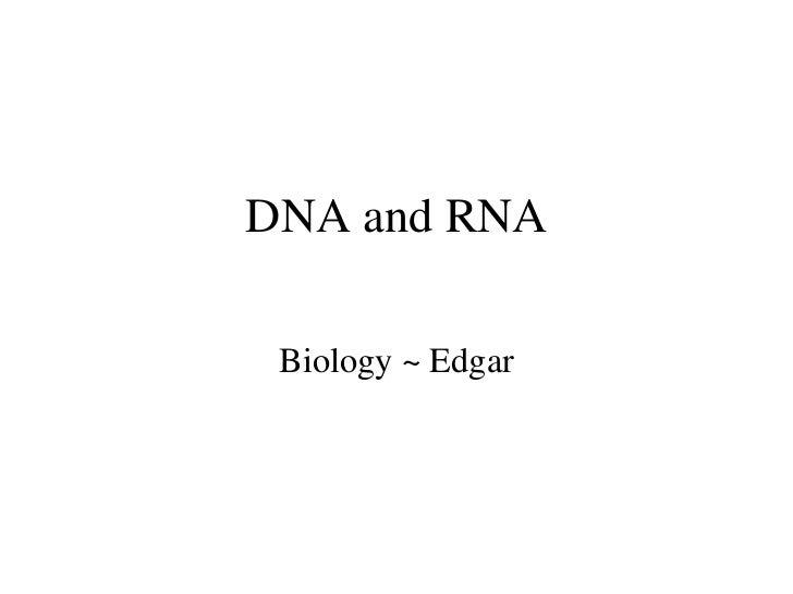 DNA and RNA Biology ~ Edgar