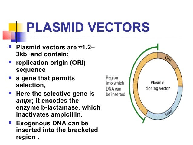 properties and uses of plasmids The terms plasmid and vector are often used interchangeably, but their meanings are slightly different a plasmid is an extra-chromosomal dna molecule found in bacteria (sambrook and russell, 2001 [1]) plasmids and chromosomes are replicated using the same enzymes, but plasmids are replicated and inherited.