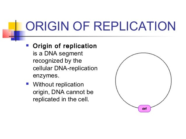 an introduction to the analysis of dna replication State the role of the origin of replication in dna replication 27s2 analysis of meselson and stahl's results to obtain support for the theory of semi-conservative replication of dna compare dispersive, conservative and semi-conservative replication.
