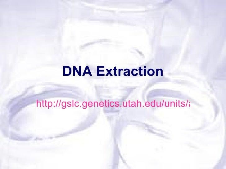 DNA Extractionhttp://gslc.genetics.utah.edu/units/activities