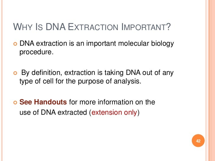 the dna extraction