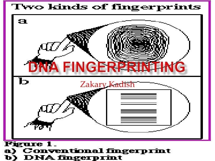 Dna fingerprinting science project pp