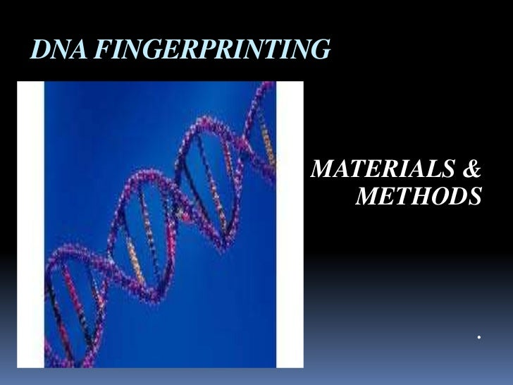 DNA FINGERPRINTING                MATERIALS &                  METHODS                          .