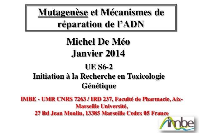 Mutagenèse et Mécanismes de réparation de l'ADN Michel De Méo Janvier 2014 UE S6-2 Initiation à la Recherche en Toxicologi...