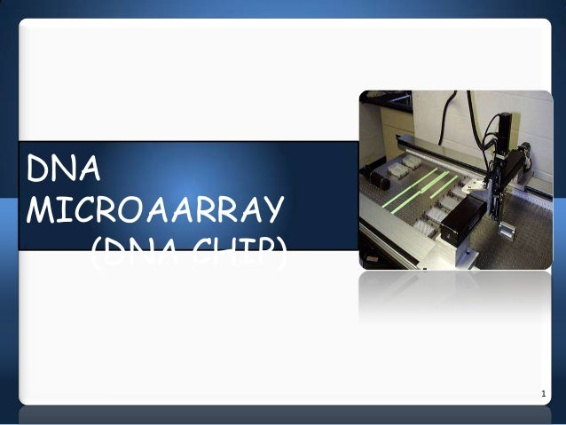 Dna microarray (dna chips)