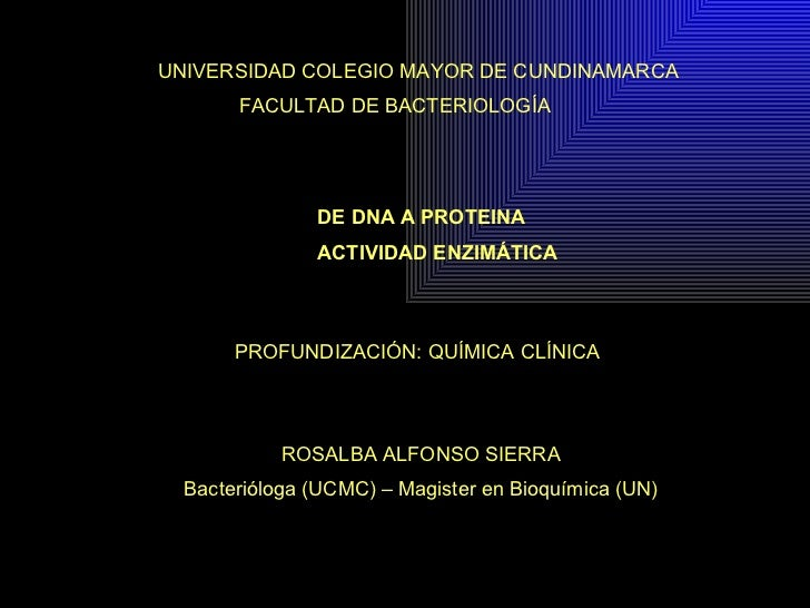 DE DNA A PROTEINA ACTIVIDAD ENZIMÁTICA PROFUNDIZACIÓN: QUÍMICA CLÍNICA UNIVERSIDAD COLEGIO MAYOR DE CUNDINAMARCA FACULTAD ...