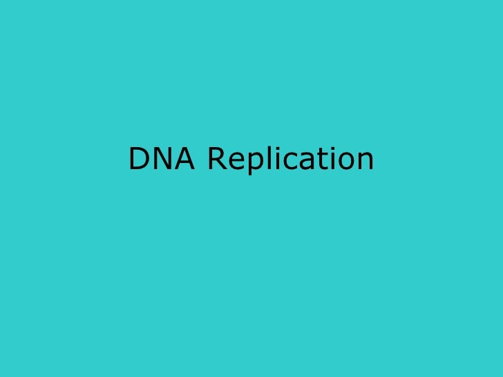 Dna replication Lecture