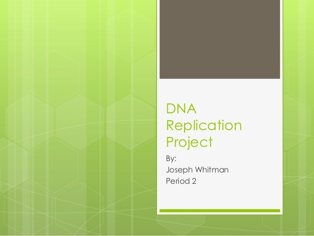 Dna Replication Project Joseph Whitman