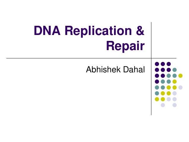 DNA Replication & Repair Abhishek Dahal