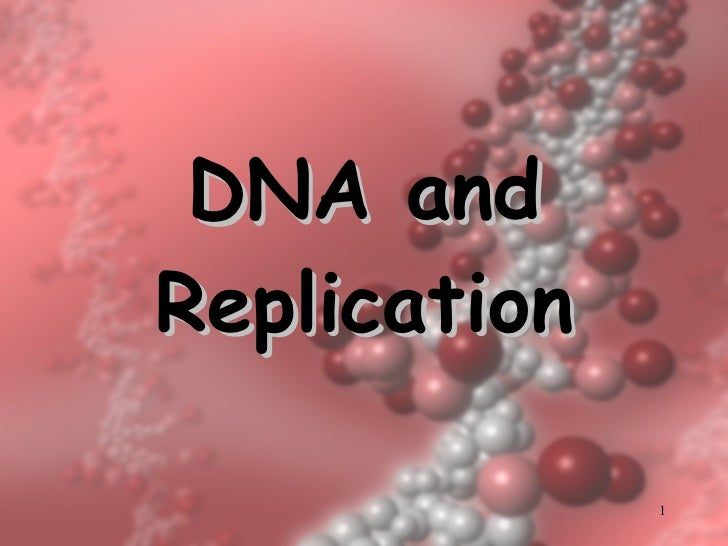 DNA and Replication