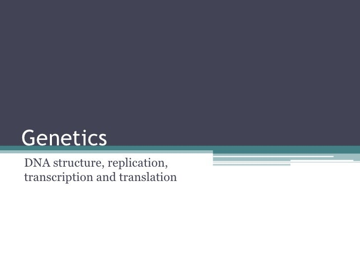 4.1 DNA structure