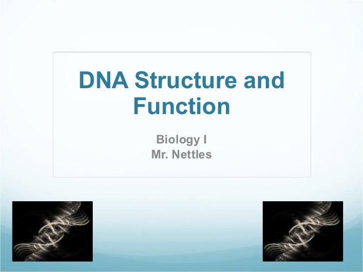 DNA Structure and Function Biology I Mr. Nettles