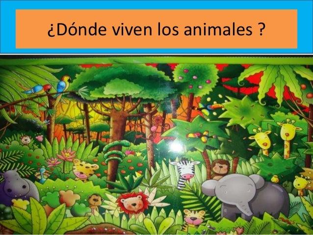¿Dónde viven los animales ?