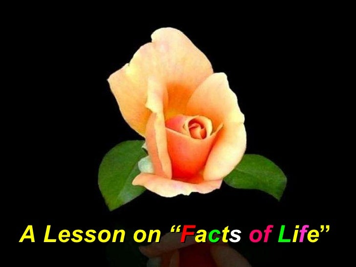"""A Lesson on """" F a c t s   of   L i f e """""""