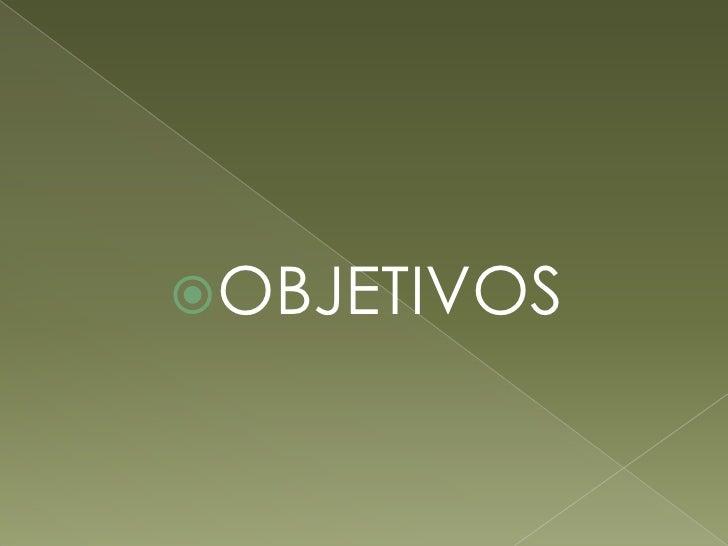 OBJETIVOS<br />