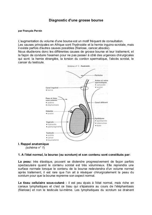 Diagnostic d'une grosse bourse par François Pernin L'augmentation du volume d'une bourse est un motif fréquent de consulta...