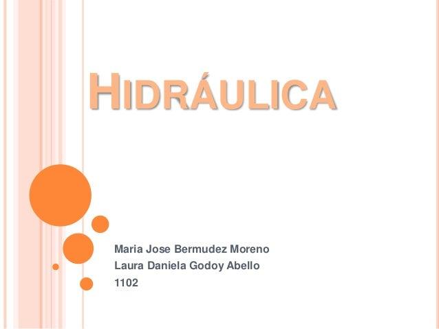 HIDRÁULICA Maria Jose Bermudez Moreno Laura Daniela Godoy Abello 1102