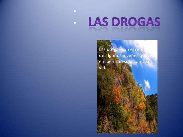 ••    Las drogas son el refugio    de algunos jovenes que no    encuentran solucion a sus    vidas